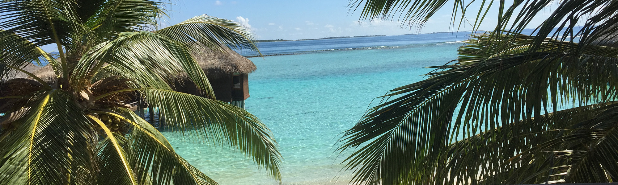 Tropical water and bungalow