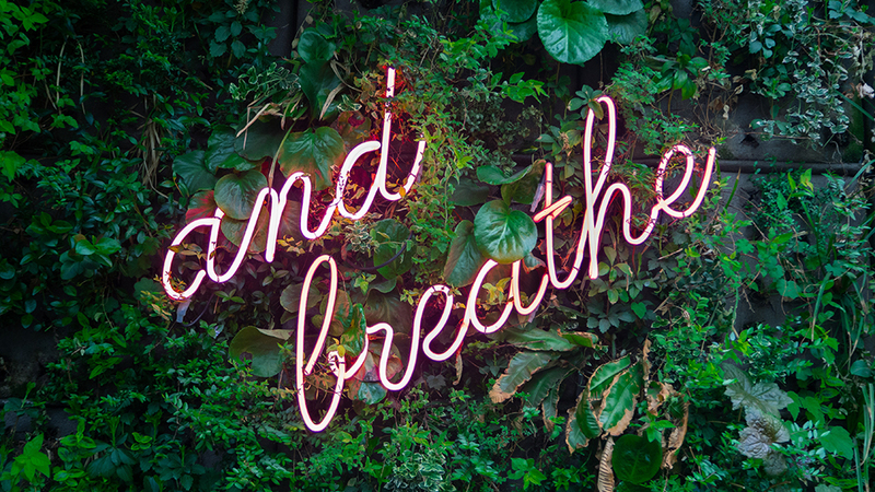 Wall of plants covered with a neon sign reading 'and breath'