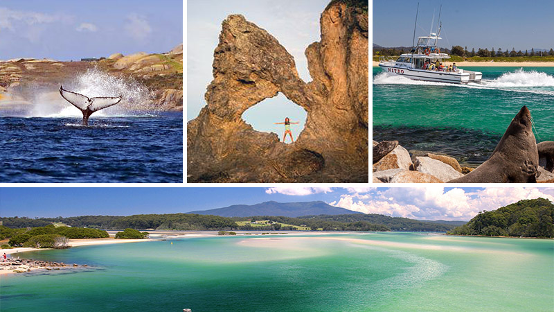 Featured Jobs collage of the Far South Coast of NSW