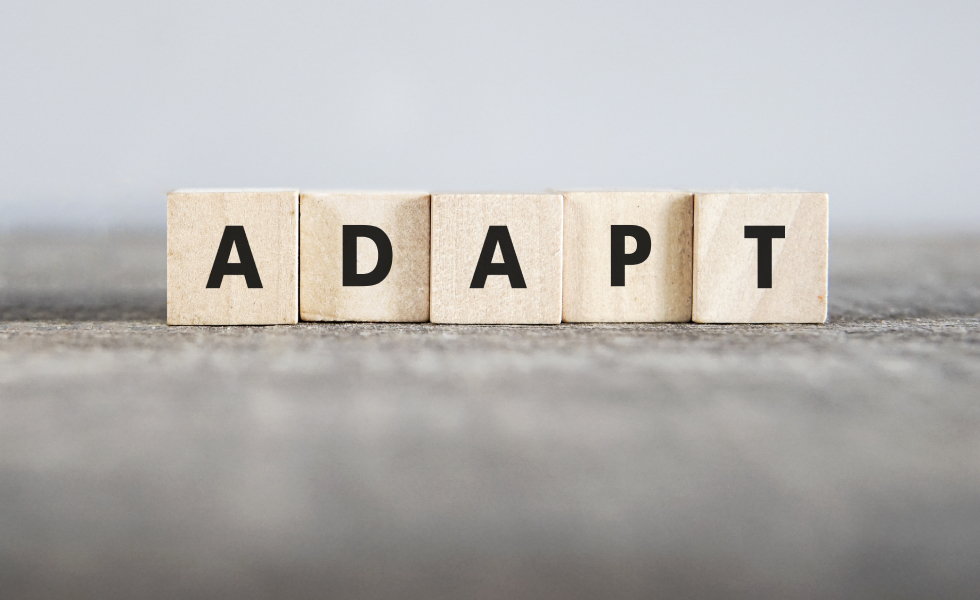 Picture of text cubes saying adapt