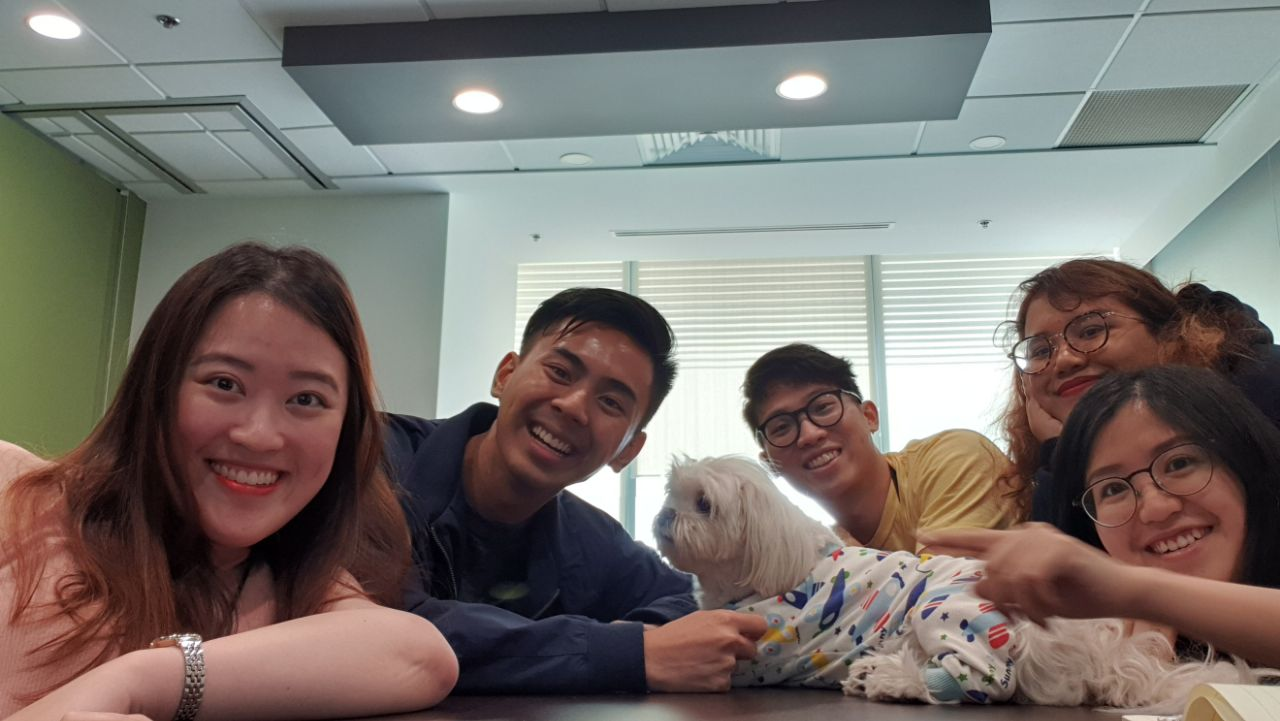 pets-allowed-at-bgc-group